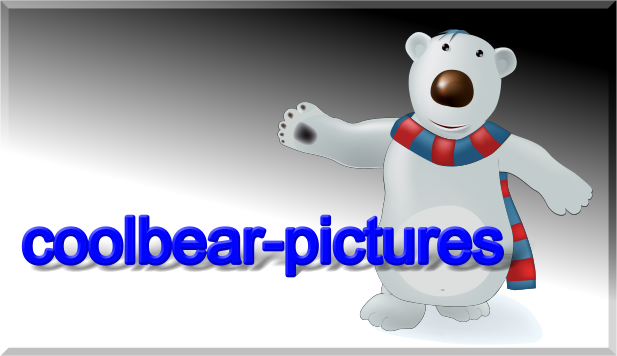 coolbear-picture.de